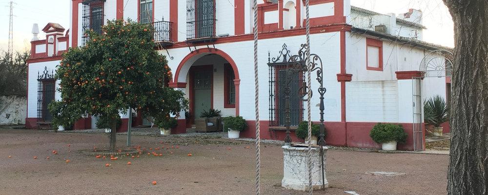 Viña La Carreña