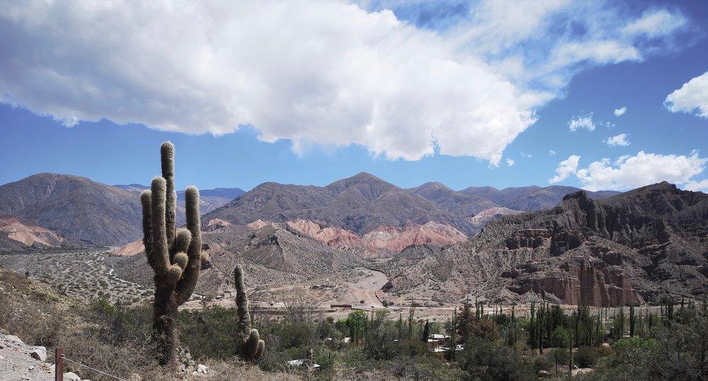 Cacti from Tilcari - The Grown Up Edit - Dial a Flight.jpg