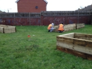 Raised Beds being constructed on site dec 2016 by volunteersfrom the community payback scheme