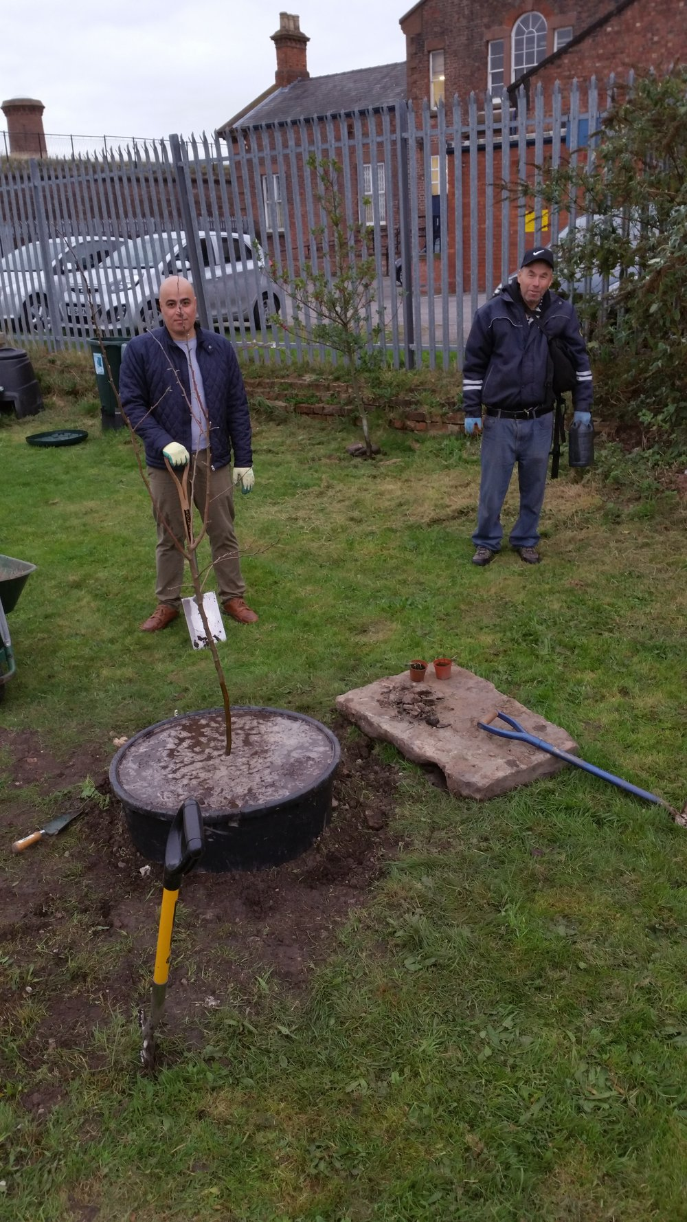 OUR ADULT GARDENING CLUB PLANTING THEIR FIRST APPLE TREE