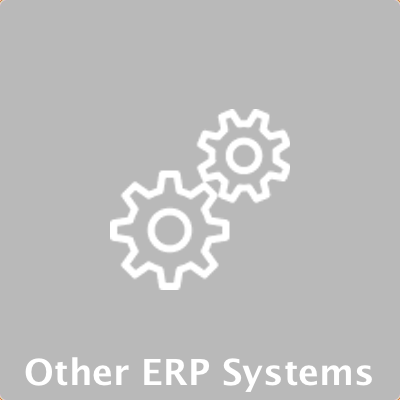 Other ERP Systems.png