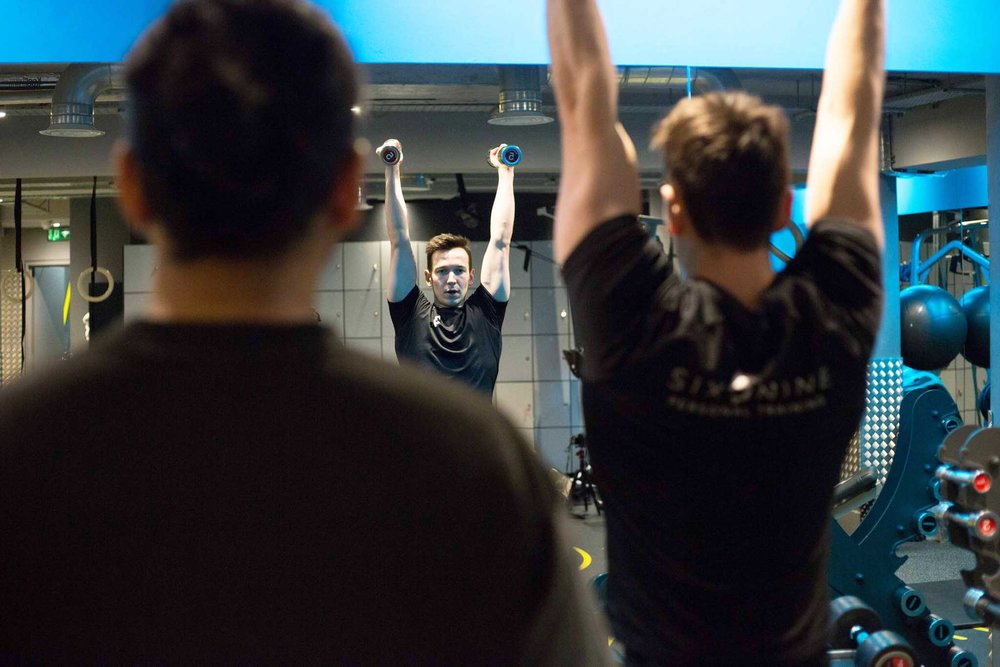 MuscleBuildingWorkshopSIX3NINE