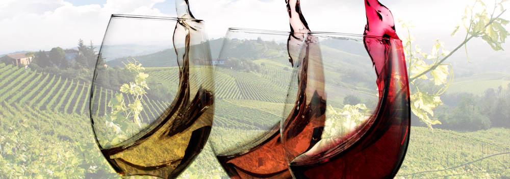 Matrimonio In Langa : Matrimonio in langa e roero: il tema e il vino! u2014 wedding langhe e