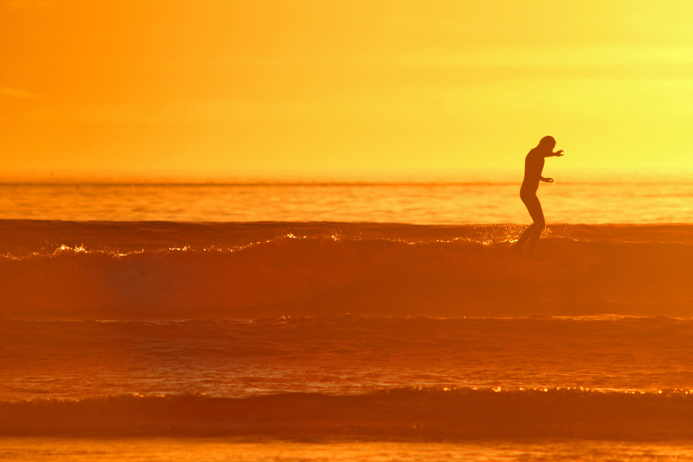 Golden Light Longboarder Terra Mar, Carlsbad CA.jpg