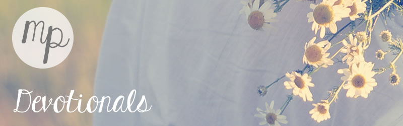 devotionals-daisies.jpg