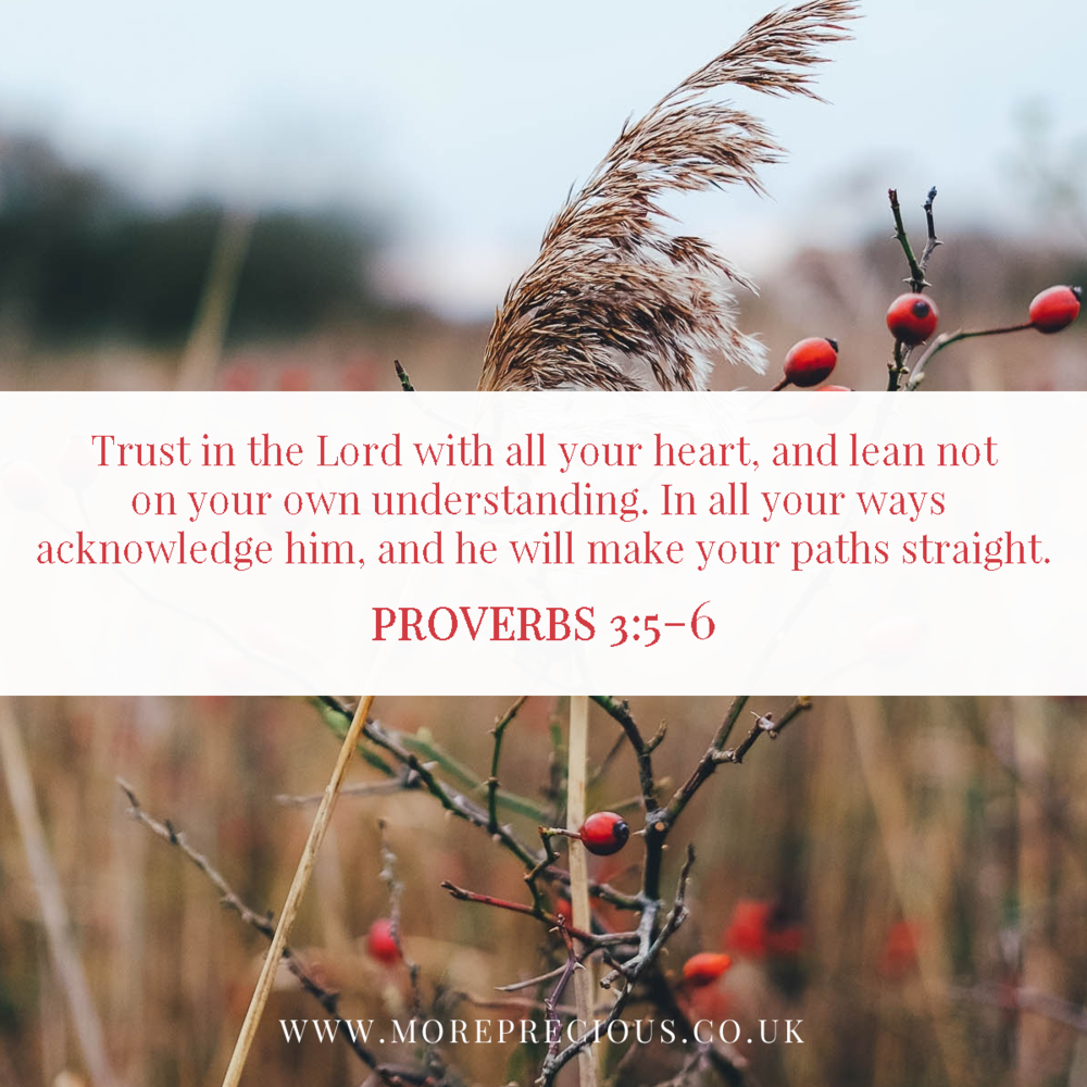 13 - Proverbs 3v5to6_preview.png