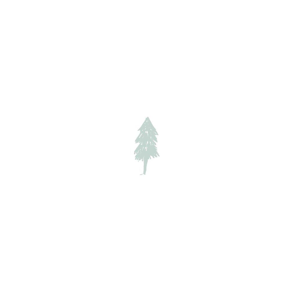 MP tree in snow.jpg
