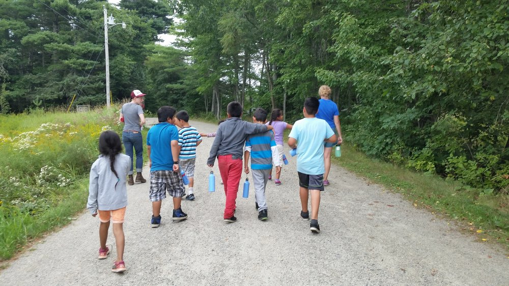 Students off to the forest to reflect on their learning during Blueberry Harvest School