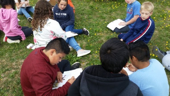 """Milbridge students creating their own field guides during """"Thursday Forays"""""""