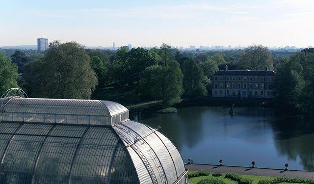 Fresh morning at #kewgardens #london . . . . . . . . . #djipilot #dji #kew #londontourist #gardens #drone #droneoftheday #dronestagram #droneporn