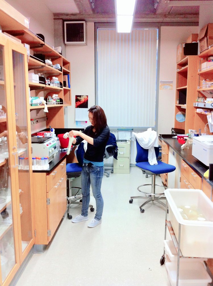 Clinical Research — bench to clinical research