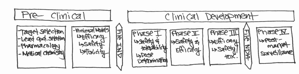 Over-simplified doodle of the drug development process.