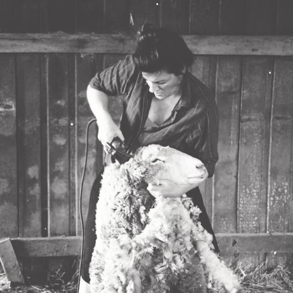 Sabrina shearing