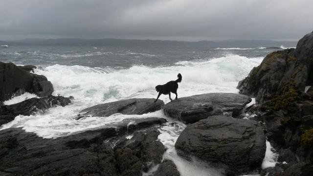 stormy knoydart