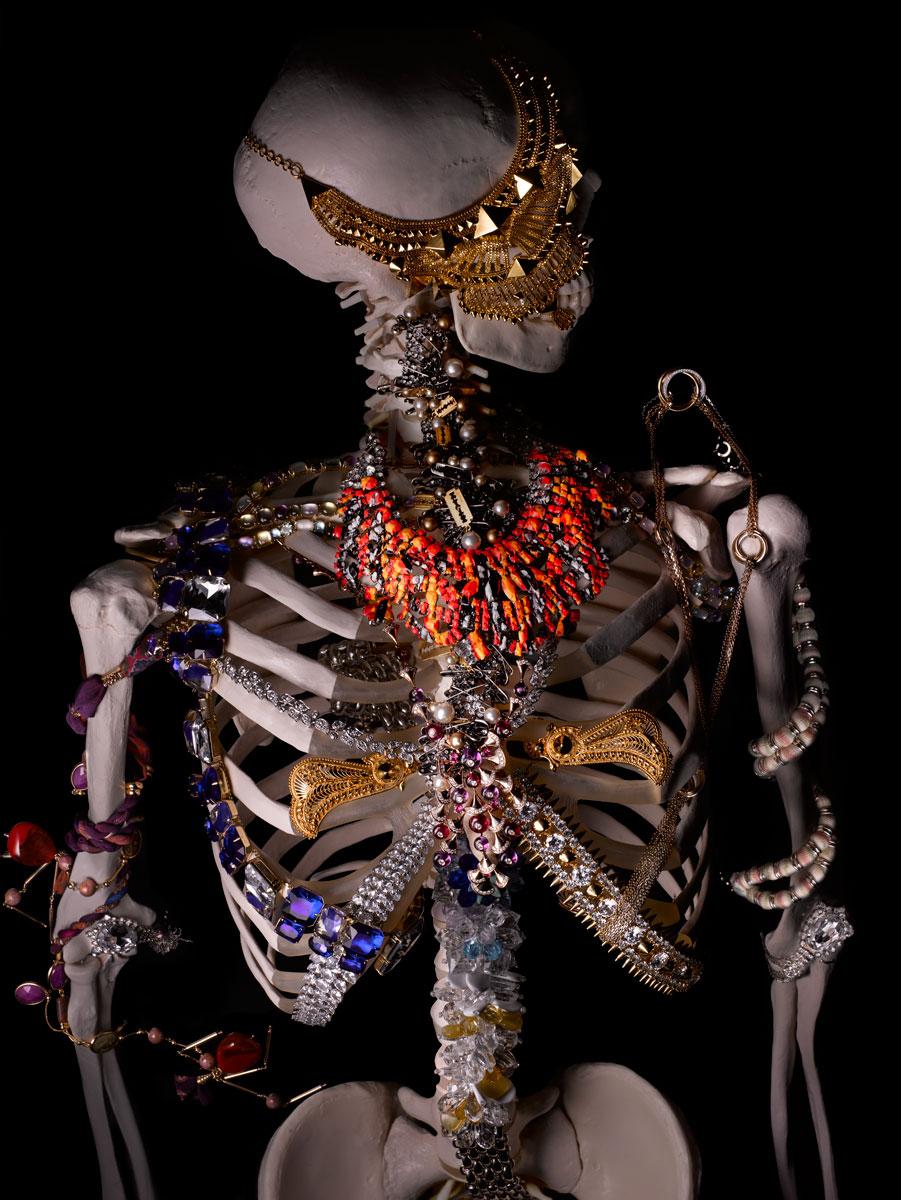 Flaunt_skeleton_front.jpg