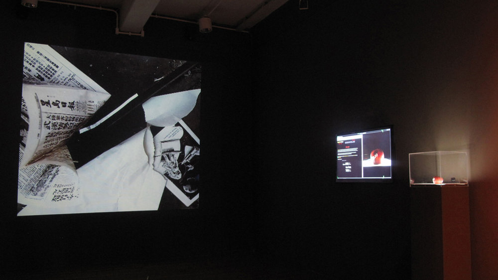 Regina-vater-Presentation-of-LUXOLIXO-artist-individual-show-Oi-Futuro-Rio-Janeiro-foto-Vicente-Mello.jpg