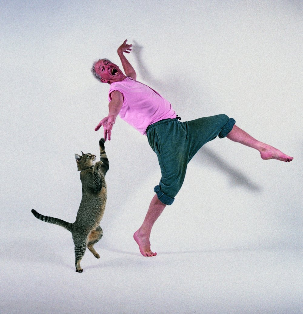 Dancing-with-Cats_14.jpg