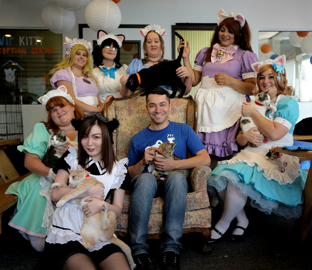 Carlos Wong, founder of Catfe Cat Café in Los Angeles, joined by the Catfe Maids.