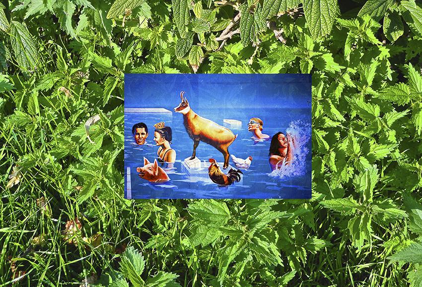 "Michel Houellebecq, ""Arrangements #004"" (2016). Pigment print on Baryta paper mounted on aluminum. 39 1/8 x 57 1⁄2 in (99.4 x 146 cm)"