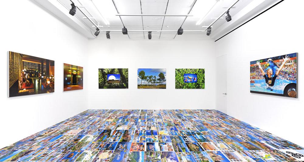 "Michel Houellebecq, ""French Bashing"" (2017). Installation view at Venus Gallery"