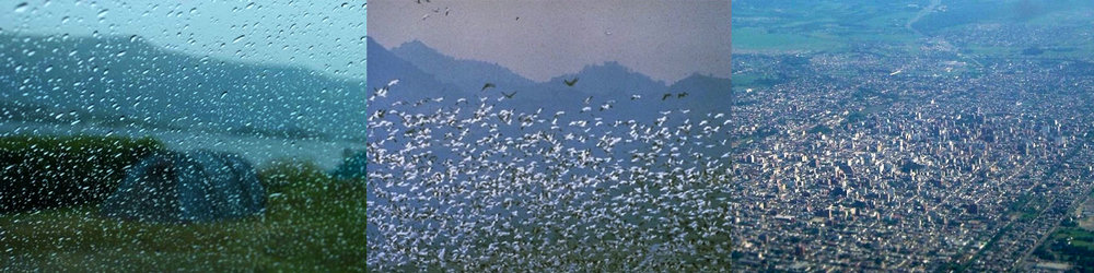 """MARA EAGLE. """"IF YOU CAN NOT AVOID, ENJOY THE CHARM OF RAIN CAMPING!; THIS WETLAND IN CALIFORNIA IS HABITAT FOR MIGRATING SNOW GEESE; TUCUMÁN (SPANISH PRONUNCIATION: [TUKUˈMAN])"""" FROM THE SERIES ATLAS OF MAGNILOQUENT DIGITALIA. (2017-2018). COURTESY OF THE ARTIST AND THE BERGGRUEN INSTITUTE."""