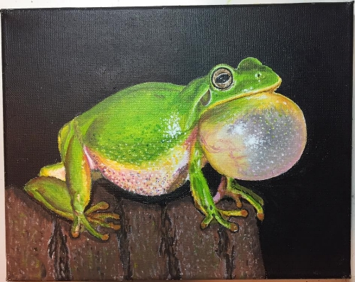 Green Tree Frog                        Artist : Walter Kwacz  •  Email : walt90m@comcast.net •  IG :  @my.25frogs