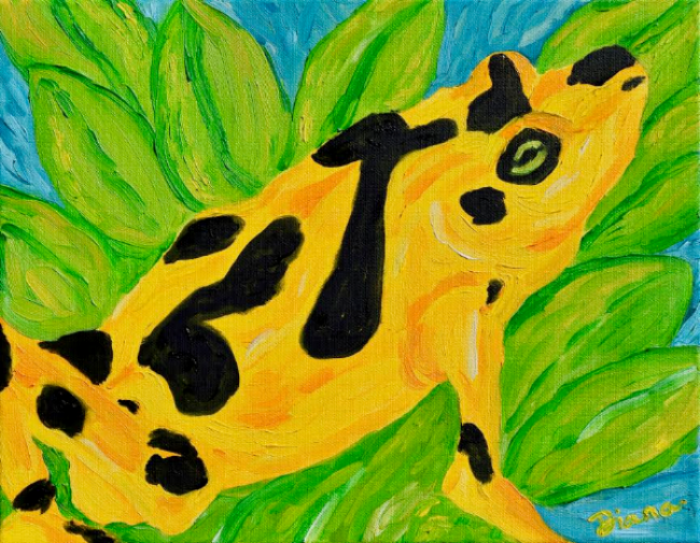 """Lost Treasure"" : Panamanian Golden Frog    Artist : Diana Fletcher  Instagram :  @needmorewildlife   Twitter :  @DianaKFletcher   Email : needmorewildlife@gmail.com  Website :  http://www.needmorewildlife.com/lost-treasure.html"