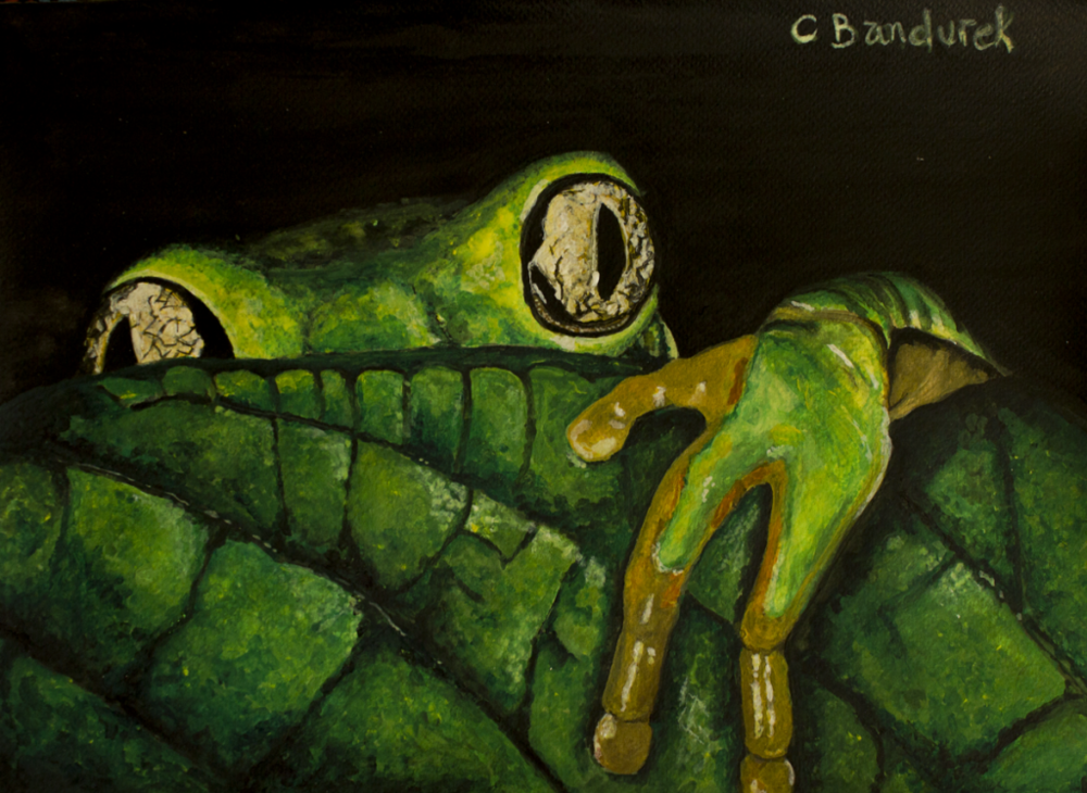 Artist : Cynthia Bandurek    Instagram :  @  cynthiabandurek_artphotography    Website :  https://cynthiabandurek.com/