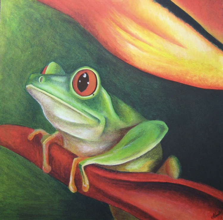 Red-Eyed Tree Frog    Artist : Suzie Simpson