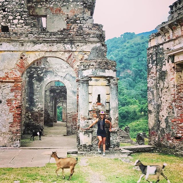Anyone that has traveled with me knows my love for goats, alpacas, and cows. How perfect that these babies photobombed my picture at the palace! #goat #haiti #milot #liveyourbestlife