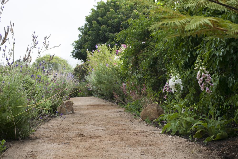 amalfi path low angle wide.jpg