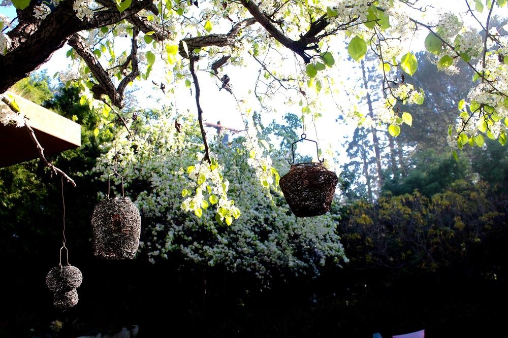 greentree birdhouses.jpg