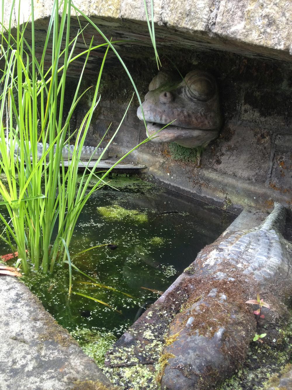 Frog Detail, Noah's Ark Fountain, Mount Stewart Estate, Northern Ireland