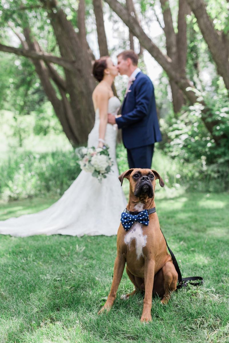 calgary_wedding_photographers - 1.jpg