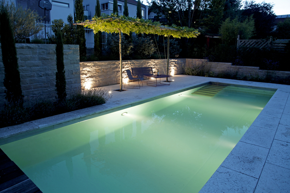 Living Pool - The Future of Pools copy.JPG