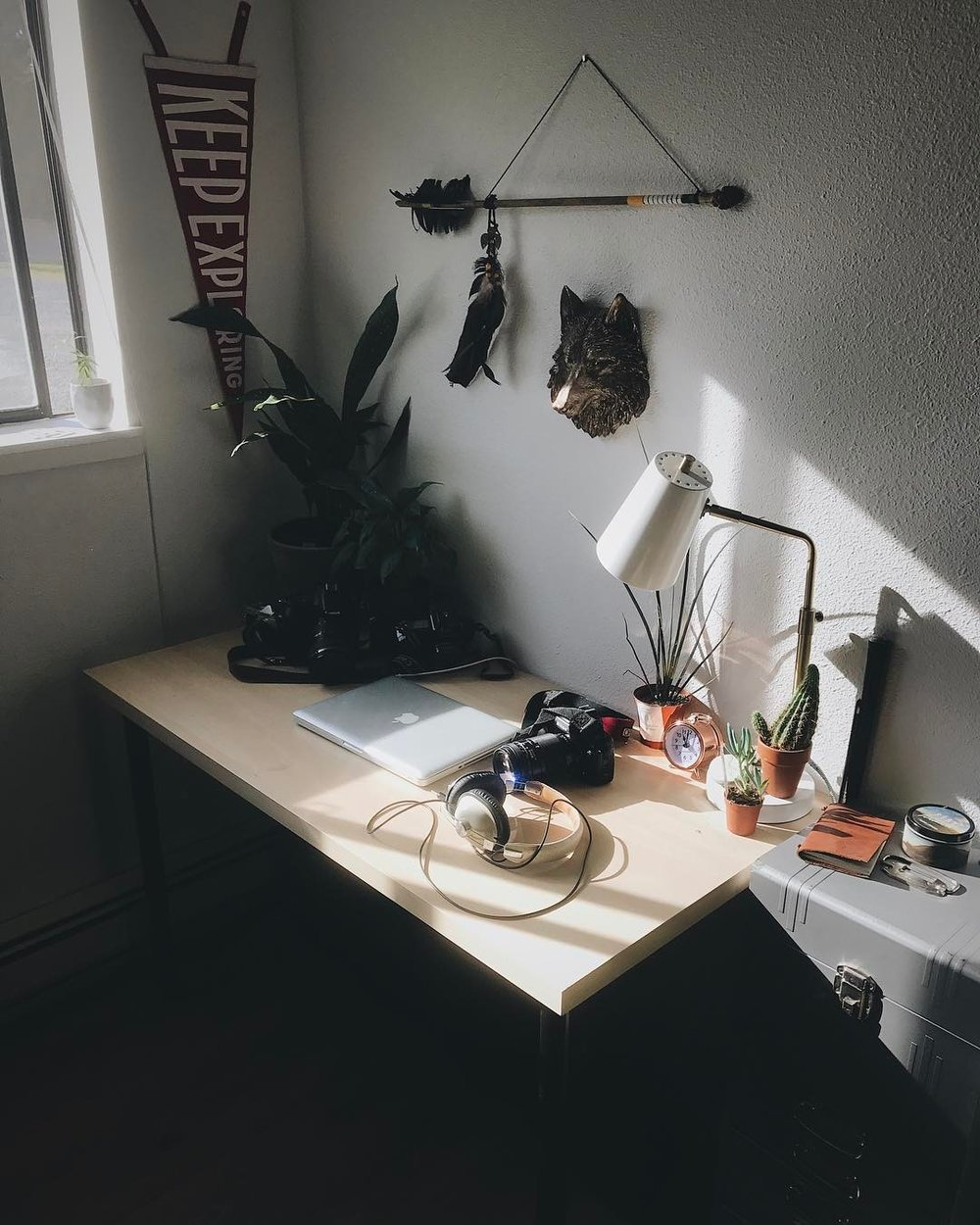A creative workspace, like @thenewmanco's sunny spot, is perfected with succulents and our KE pennant