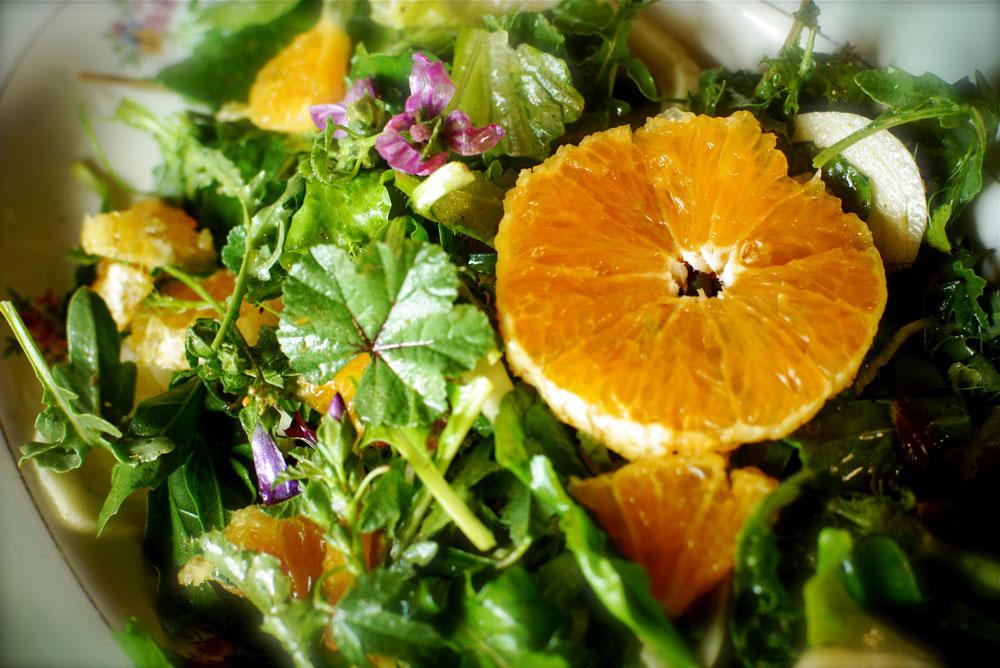 Wild green salad
