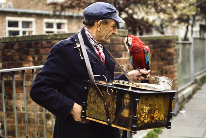 Portobello Road Organ Grinder, London 1971