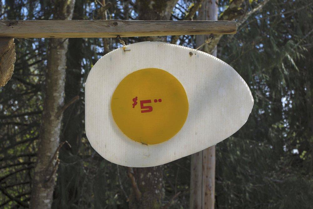 ssi egg sign 1 - Version 3.jpg