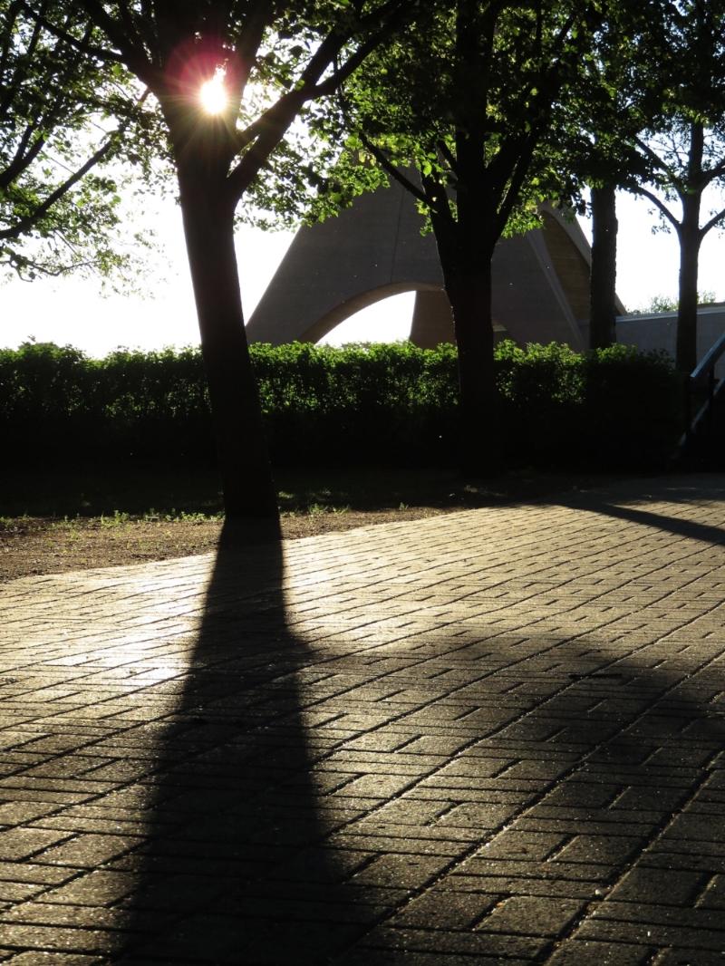 Banner detail sunrise spring 2015.JPG