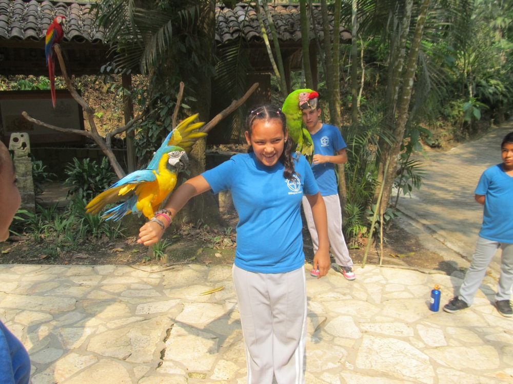 Posing with the Honduran national bird, the 'guacamaya' (macaw), on a school field trip to a bird park in April