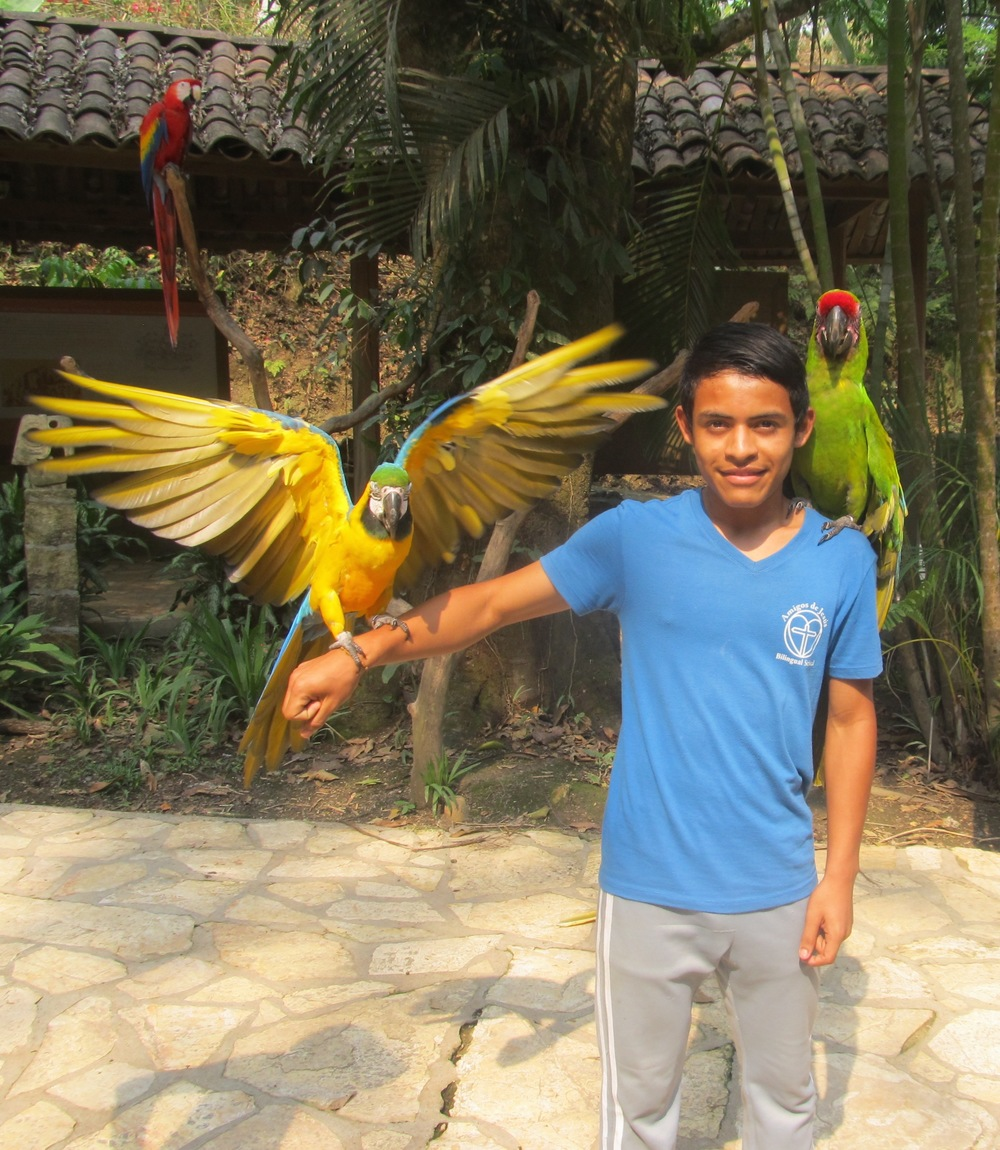 Posing with the national bird of Honduras - the macaw - during a school field trip to Copan Ruinas, Honduras, in April.