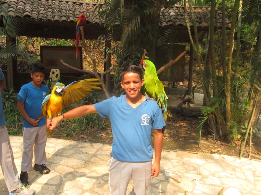 On the school field trip to the bird park in Copan Ruinas, Honduras, in April