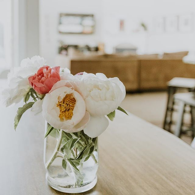 Adding a little fresh flowers to my home brightens up my mood and all those in the house. 🙌🏼 I also happen to work at home so having something. Beautiful and fresh gets my girl boss vibes on. Add some amazing tunes and I'm set for the day. 🎶 What gets you moving and shaking for a good days work? 💃🏻 Sent via @planoly #planoly #communityovercompetition #risingtidesociety #girlboss #smallbusiness #smallbiz #virtualassistant #assistant #thevirutalcoffeedesk #coffeeandwork #outsourcing #gritandvirtue #mlm #theeverygirl #wahm #workingwomen #womenentrepeneurs #entrepreneur #womaninbusiness #womanhood #motherhood #selfcaresunday