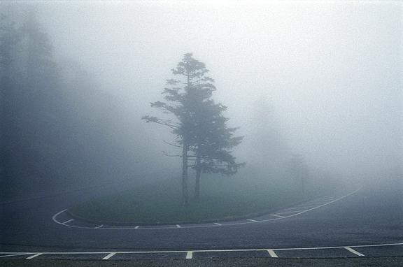 005 Journey InbalAbergil.jpg