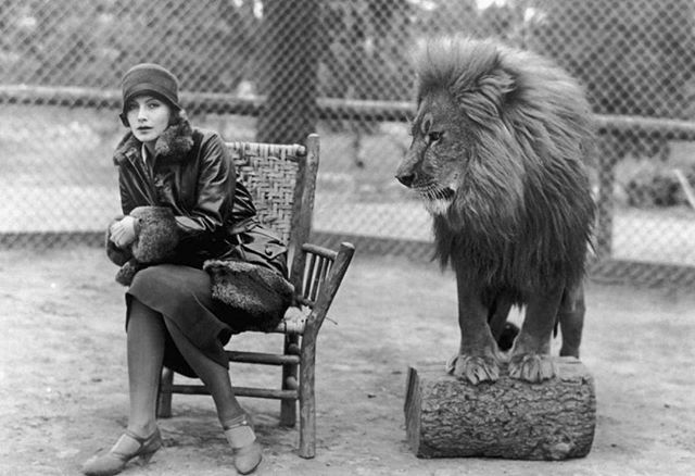 I'll end it here. Garbo and a Lion.⠀ ⠀ They'd NEVER let this happen today, but oh what an image!⠀ ⠀ ⠀ #cinematography #film #vintagefilm #filmnoir #womeninfilm
