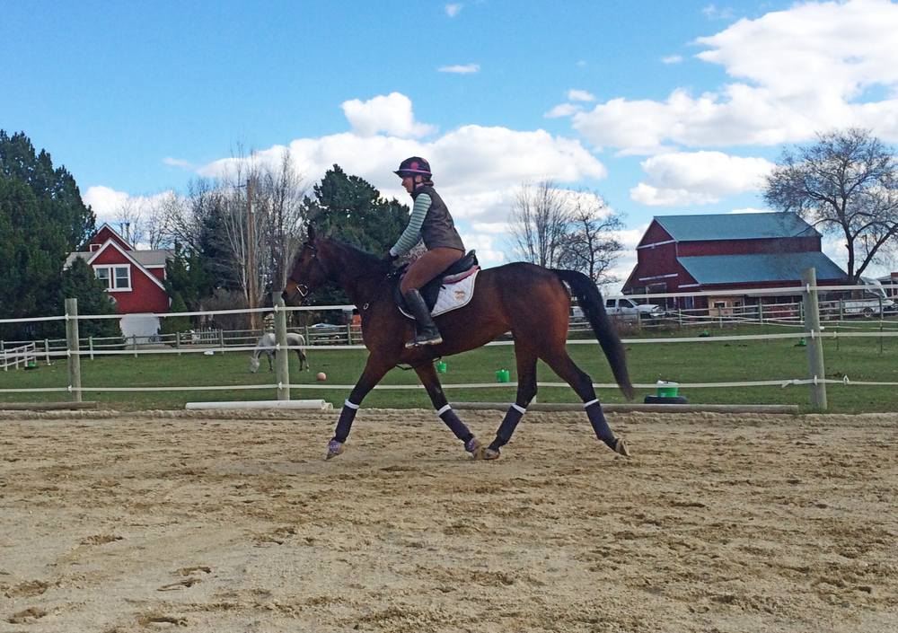 This is just his regular trot