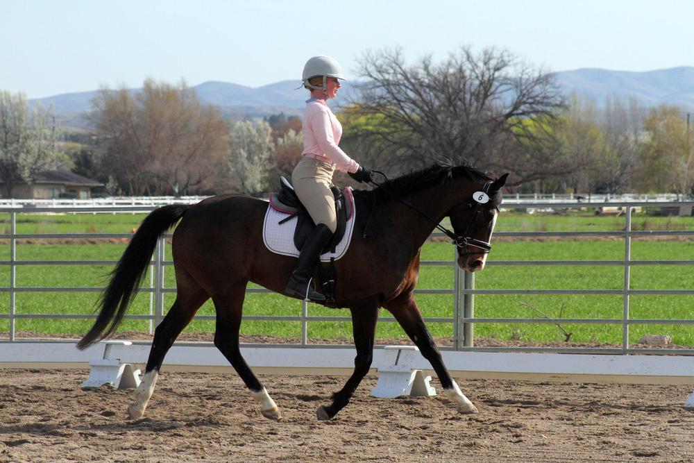 Prancy pony
