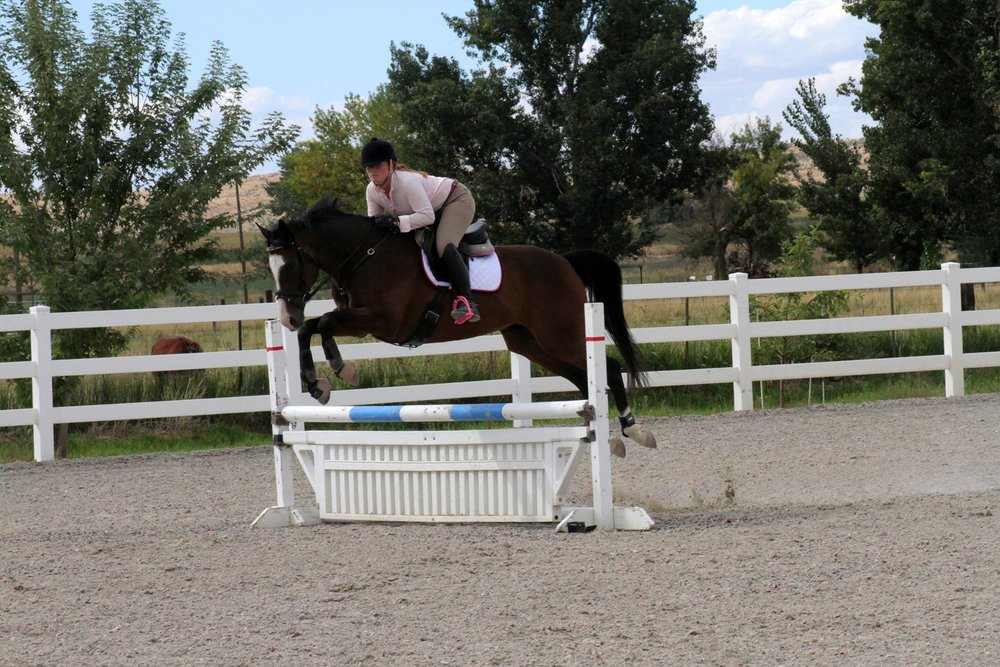 Prisoner jumping the jumps at a horse show! PC: Alyssa