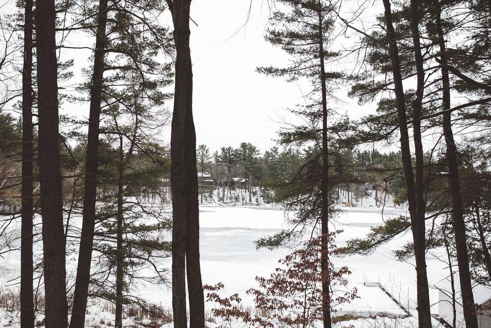 Whispering Pines 1.jpg